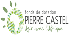 FONDS DE DOTATION PIERRE CASTEL